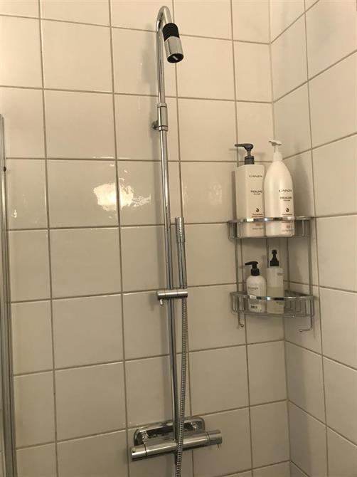 Montering av ny duschblandare med takdusch