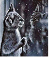 Diamond Painting, Katt m/speilbilde 39*49,5cm FPR