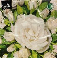 Serviett - Hvit rosa