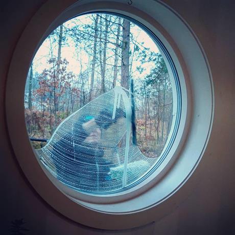 SVIS Städ RUT-tjänster fönsterputsning