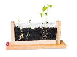 Växt laboratorium