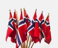 17.mai flagg 15x20,6