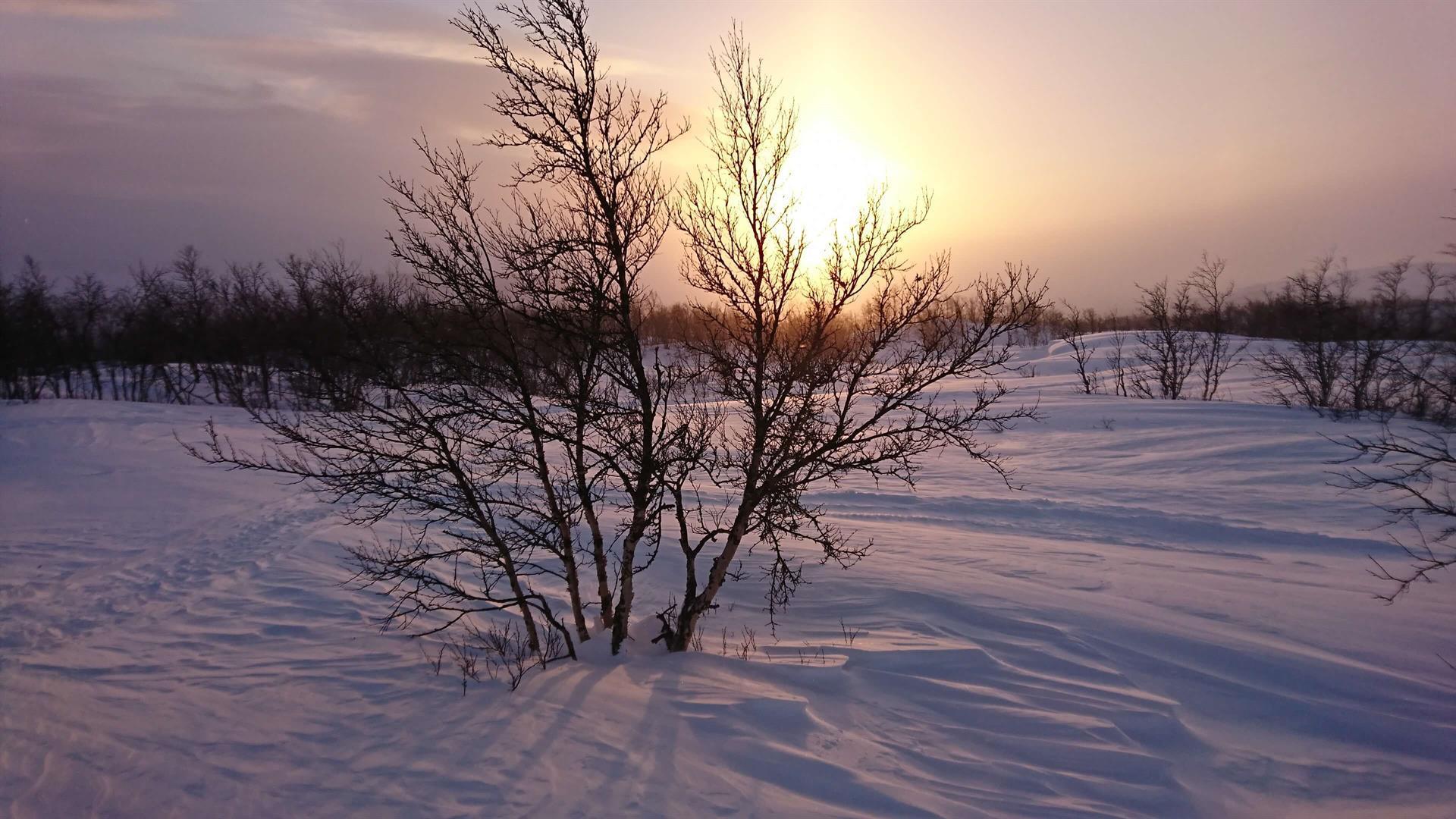 Ruotsin metsästysmatkat kevät