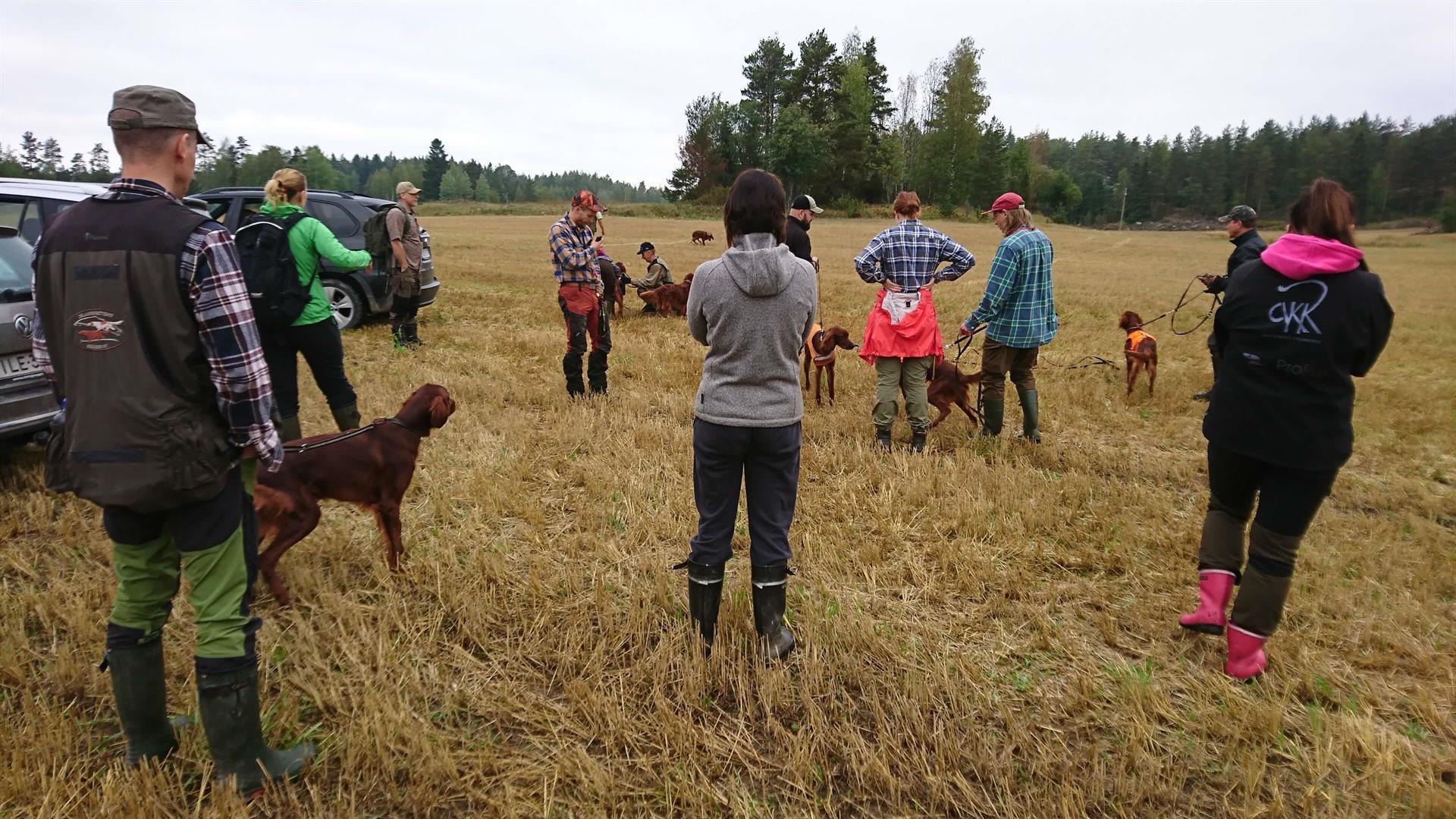 Koirien koulutus ja kokeet Norrby Gårdissa