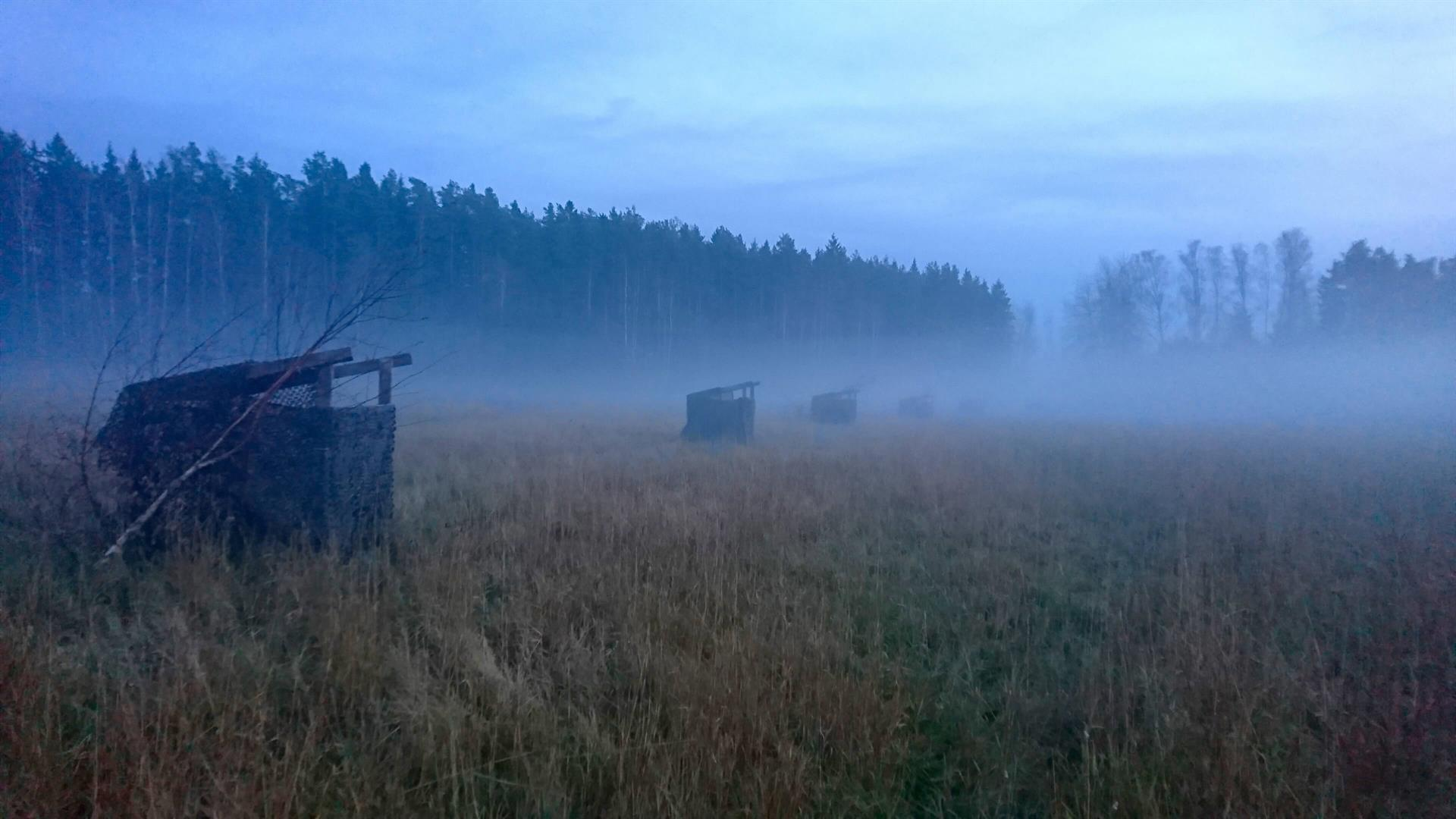 Sorsajahtia Norrby Gårdissa