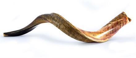 Shofar (sjofar)