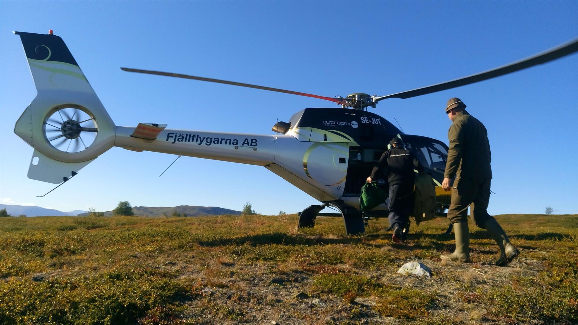 Ruotsin metsästysmatkat syksy