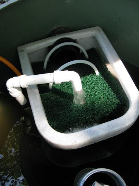 HS- sa biopuhdistamo 1000l (10pe), ei sakokaivoa