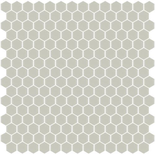 Hex 306 Gray