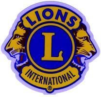 D1S - Dekal Lions